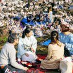 Kimono och saké